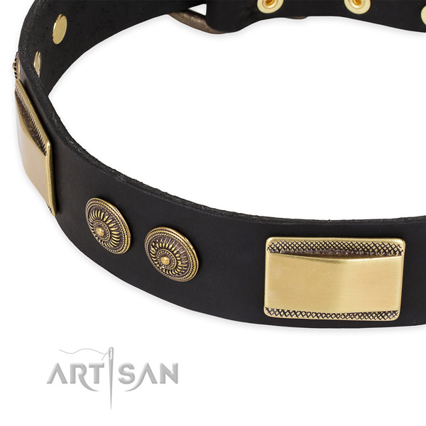Everyday walking natural genuine leather collar with reliable buckle and D-ring