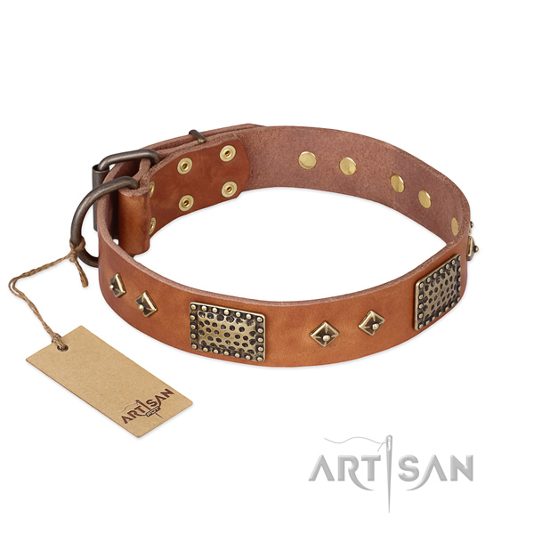 Trendy design embellishments on natural genuine leather dog collar