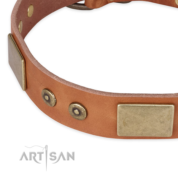 Walking full grain genuine leather collar with corrosion resistant buckle and D-ring