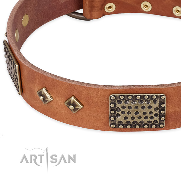 Daily walking full grain leather collar with corrosion resistant buckle and D-ring