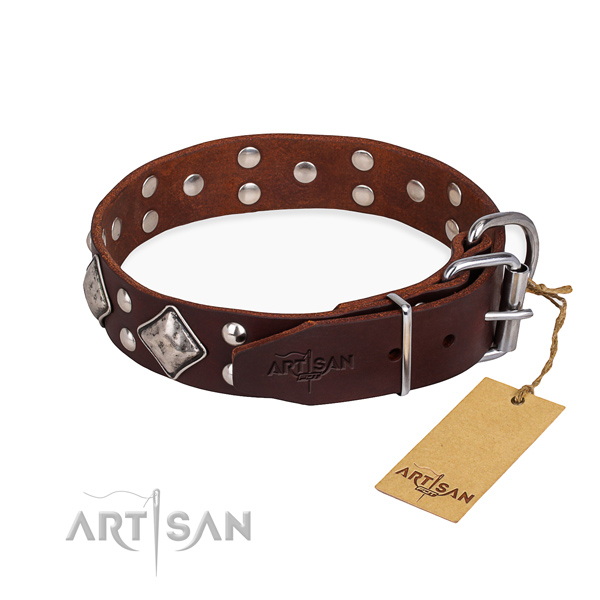 Multifunctional leather collar for your stunning dog