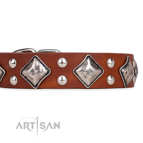 Adjustable leather dog collar with extra strong durable fittings