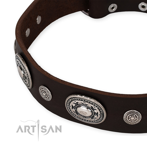 Snugly fitted leather dog collar with almost unbreakable rust-proof buckle and D-ring