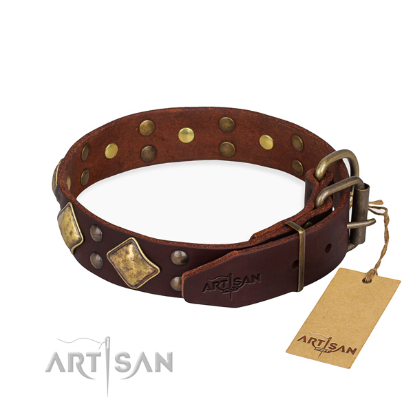 Tear-proof leather collar for your elegant dog