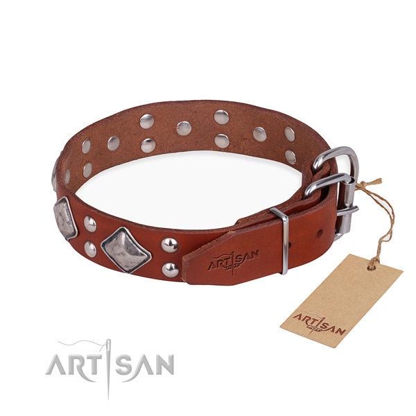 Everyday leather collar for your darling pet