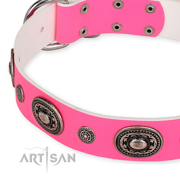 Snugly fitted leather dog collar with resistant to tear and wear brass plated fittings