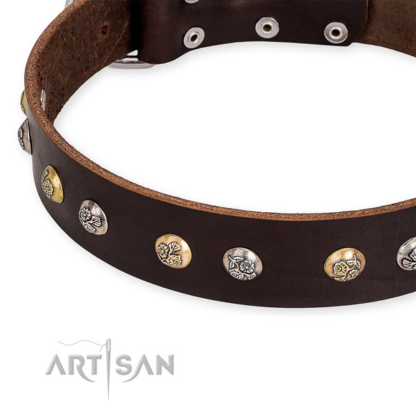 Easy to use leather dog collar with extra sturdy chrome plated hardware