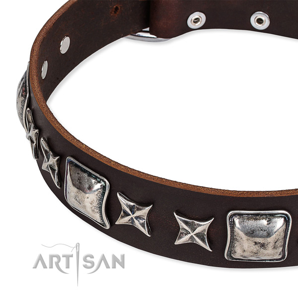 Easy to adjust leather dog collar with resistant to tear and wear rust-proof fittings
