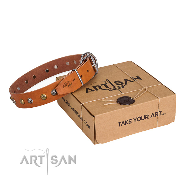 Stylish full grain genuine leather dog collar for daily walking