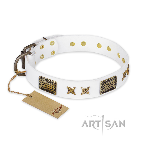 Fashionable design studs on full grain genuine leather dog collar