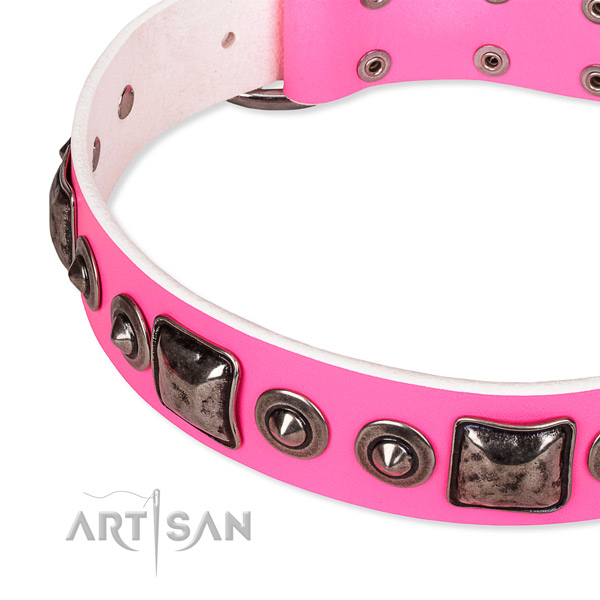 Easy to adjust leather dog collar with almost unbreakable rust-proof buckle
