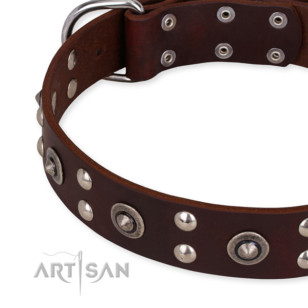 Quick to fasten leather dog collar with extra strong durable buckle