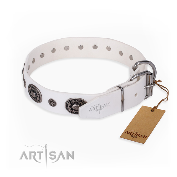 Significant design embellishments on full grain natural leather dog collar