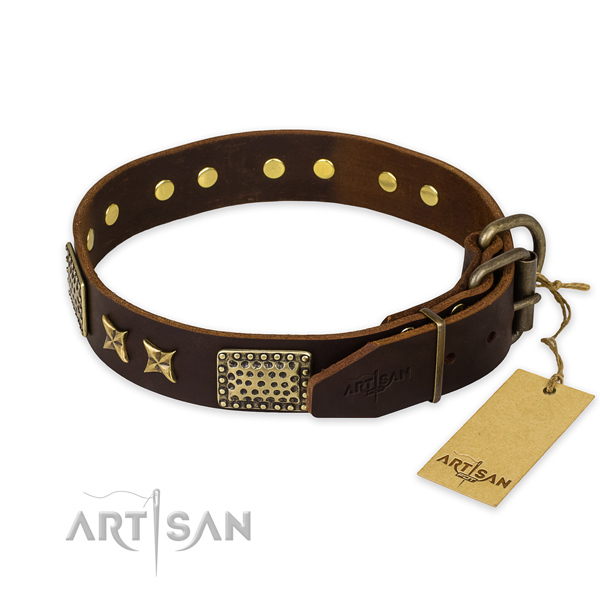 Extraordinary design embellishments on full grain natural leather dog collar