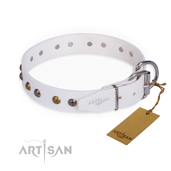 Tear-proof leather collar for your favourite dog