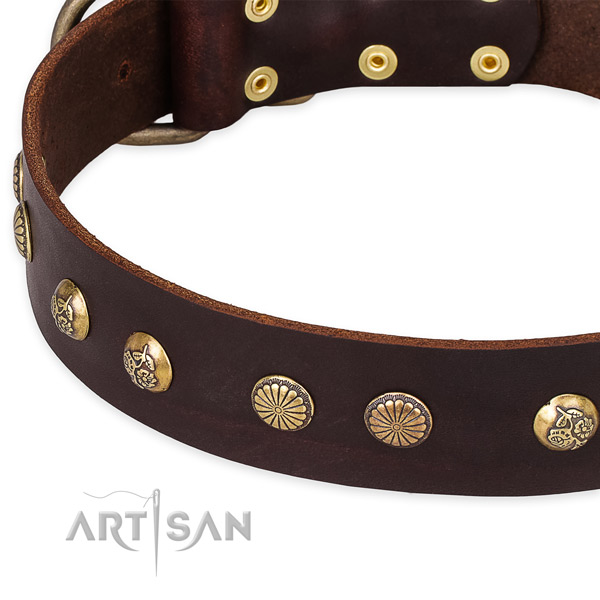 Easy to adjust leather dog collar with resistant to tear and wear durable hardware