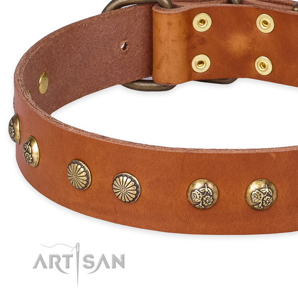 Easy to put on/off leather dog collar with resistant to tear and wear rust-proof set of hardware