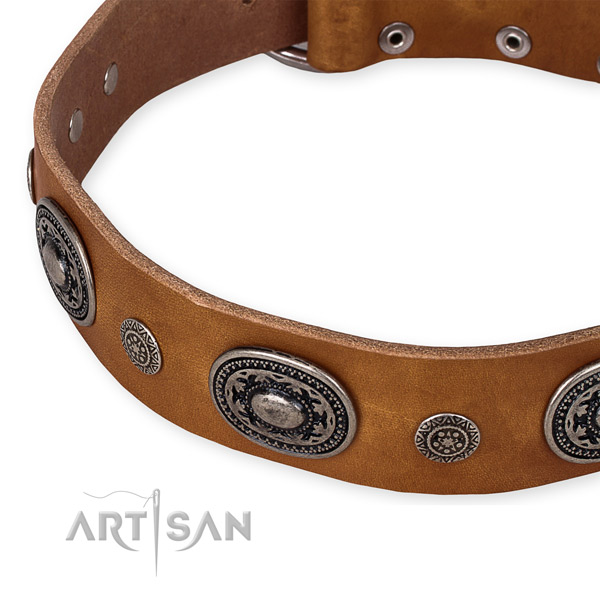 Easy to use leather dog collar with extra strong durable fittings