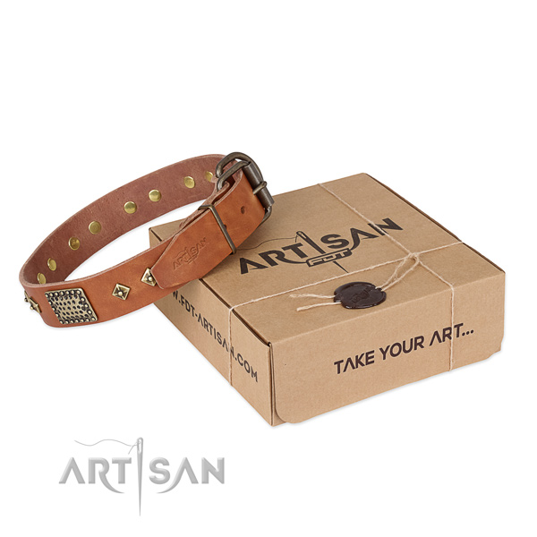 Awesome genuine leather dog collar for daily use