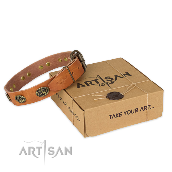 Fine quality genuine leather dog collar for everyday use