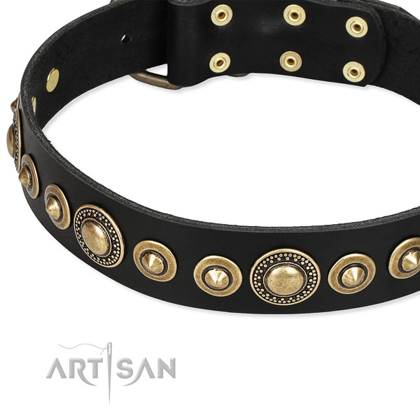 Adjustable leather dog collar with extra strong brass plated buckle