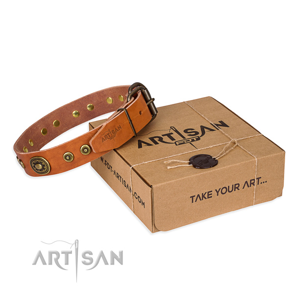 Fine quality leather dog collar for everyday walking