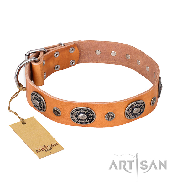 Impressive design embellishments on natural genuine leather dog collar