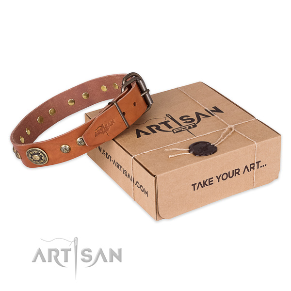 Finest quality leather dog collar for daily use