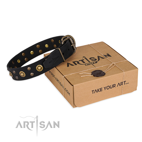 Perfect fit full grain natural leather dog collar for everyday use