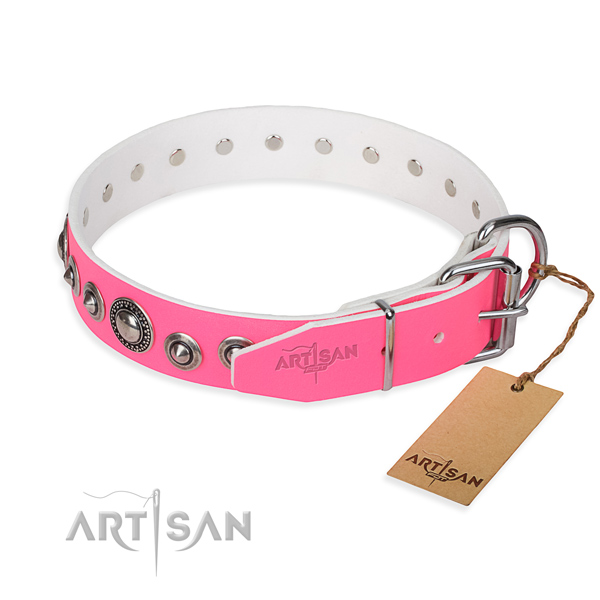 Long-lasting leather dog collar with strong elements