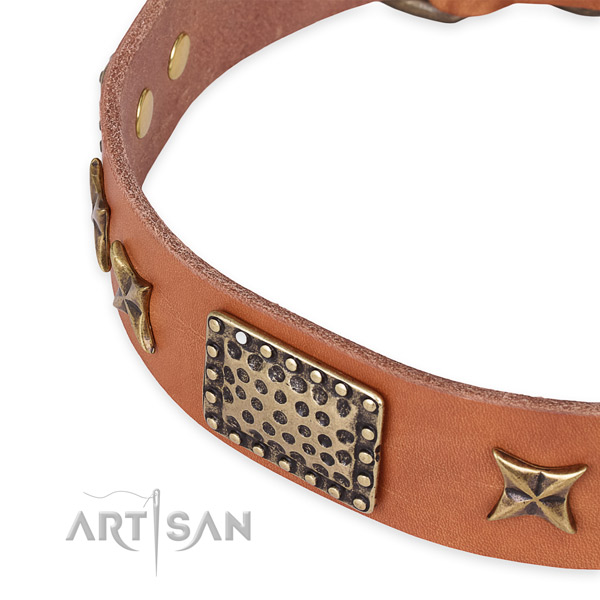 Easy to adjust leather dog collar with extra strong rust-proof buckle