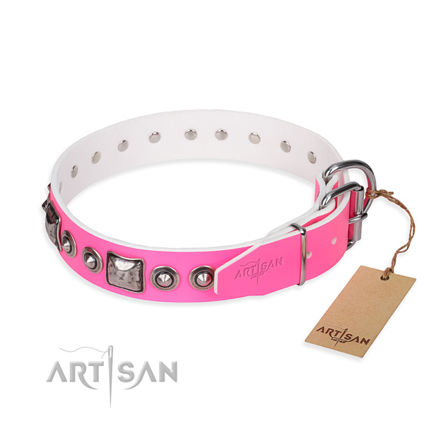 Fashionable leather collar for your stunning dog