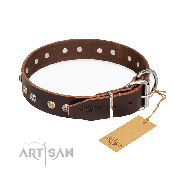 Fashionable leather collar for your noble canine