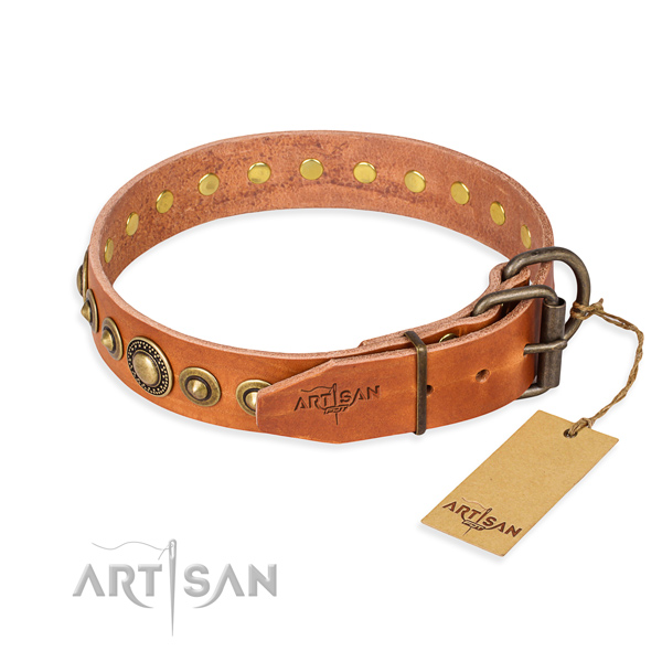 Awesome leather collar for your handsome dog