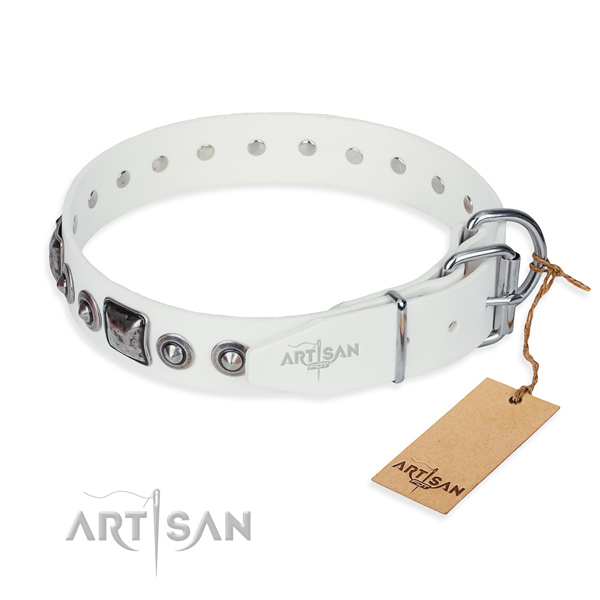 Multifunctional leather collar for your elegant four-legged friend