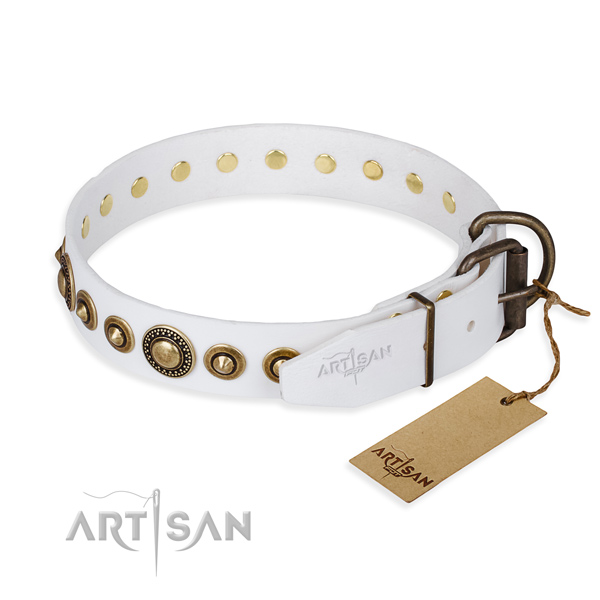Durable leather collar for your gorgeous canine