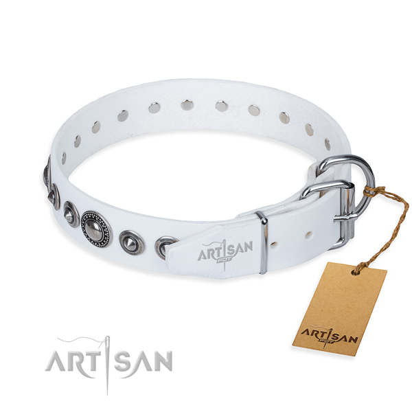 Stylish leather collar for your darling dog