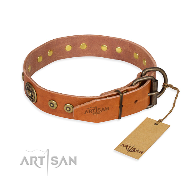 Practical leather collar for your gorgeous pet