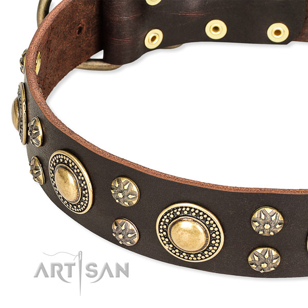 Adjustable leather dog collar with almost unbreakable durable fittings