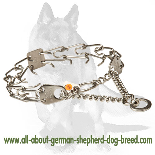 Durable stainless steel pinch dog collar