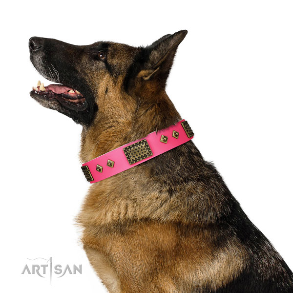 Exquisite leather collar for your impressive four-legged friend