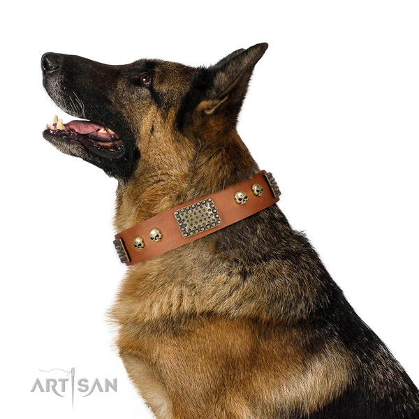 Rust resistant hardware on leather dog collar for daily use