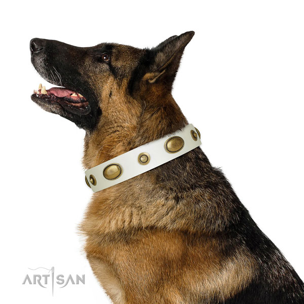 Comfortable wearing dog collar of leather with designer studs