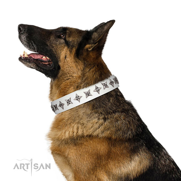 Fine quality full grain natural leather dog collar with exquisite studs