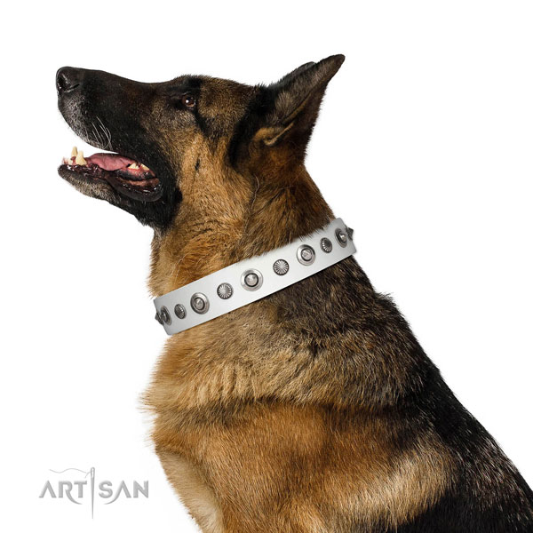 Natural leather collar with rust-proof buckle for your stylish doggie
