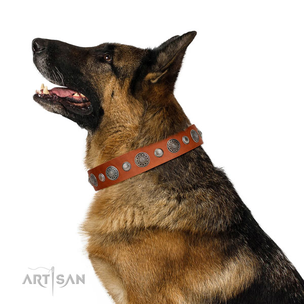 Easy adjustable full grain leather dog collar with rust-proof buckle