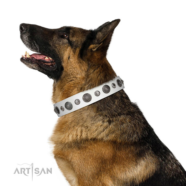 Amazing full grain genuine leather dog collar with corrosion resistant D-ring