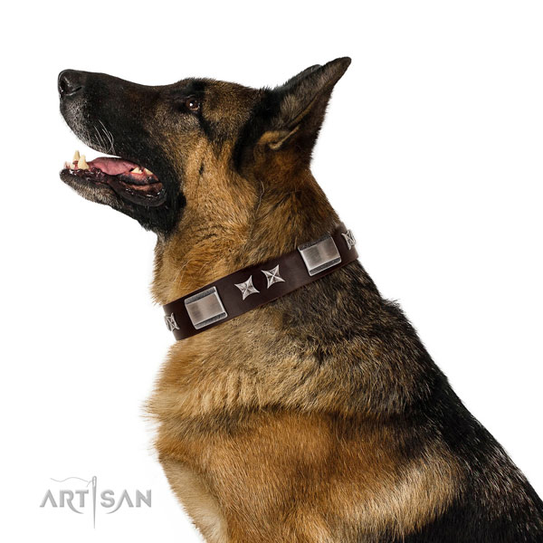 Remarkable collar of full grain genuine leather for your impressive pet
