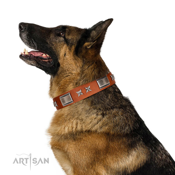 Comfortable wearing soft full grain natural leather dog collar with adornments