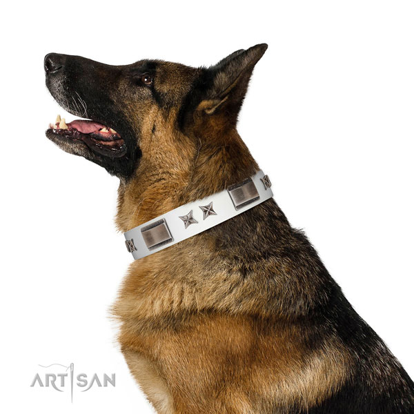 Everyday walking gentle to touch genuine leather dog collar with embellishments